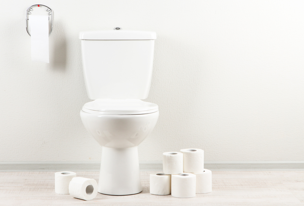 Toilet with roles of toilet paper