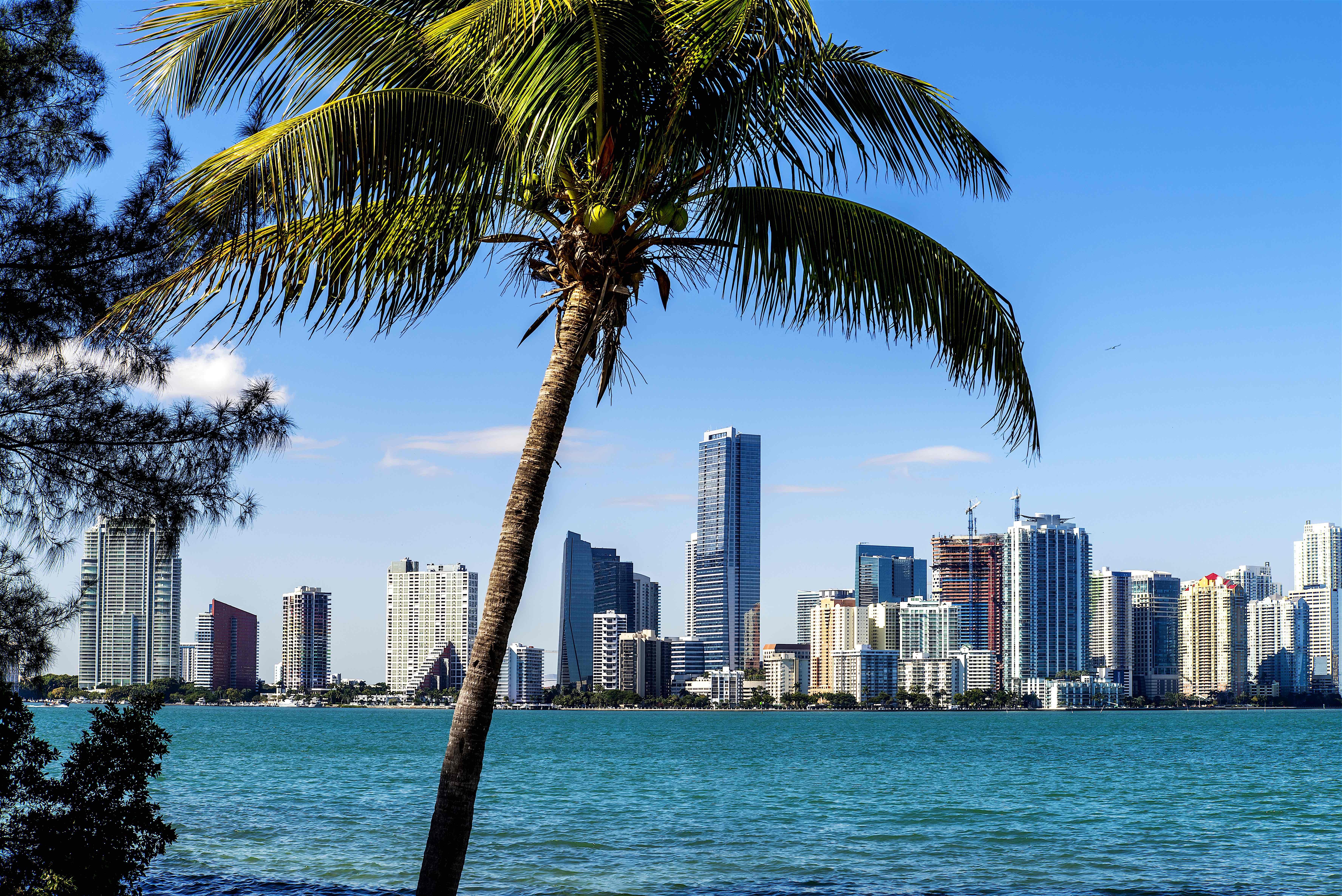 6.) Miami, FL